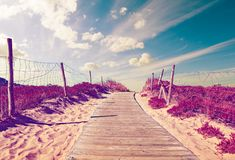 Delightful scenical landscape in beach Royalty Free Stock Images