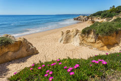 Delightful seascape coast spring Albufeira. Stock Photos
