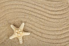 Delightful starfishes on sand Royalty Free Stock Images