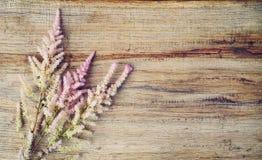 Delikat blom- ordning på träbakgrund, kopieringsutrymme Fotografering för Bildbyråer