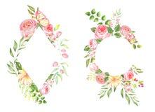 Delikatna akwareli rama róże Zdjęcie Stock