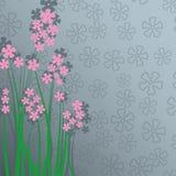 Delikatna karta z menchia kwiatami i miejsce dla teksta royalty ilustracja