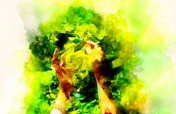 Delikatna modlitwa piękny lipowy drzewo na jaskrawym pełnia lata dniu i delikatnie zamazanym akwareli tle zdjęcie stock