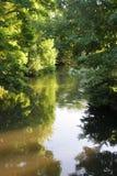 delikatna rzeki zdjęcie royalty free
