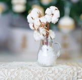 Delikatni biali bawełna kwiaty obraz stock