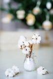 Delikatni biali bawełna kwiaty obrazy royalty free