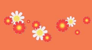 Delikatni składy kolory Zdjęcia Stock