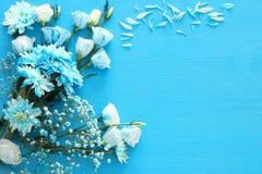 delikatny błękitny kwiatu przygotowania na drewnianym tle kosmos kopii Obrazy Royalty Free