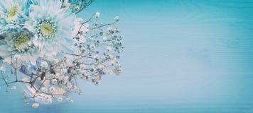 delikatny błękitny kwiatu przygotowania na drewnianym tle kosmos kopii Zdjęcia Stock