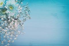 delikatny błękitny kwiatu przygotowania na drewnianym tle kosmos kopii Obraz Stock