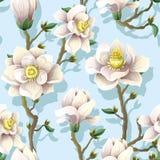 Delikatny bezszwowy wzór z magnolią kwitnie na błękitnym tle również zwrócić corel ilustracji wektora royalty ilustracja
