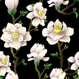 Delikatny bezszwowy wzór z magnolią kwitnie na czarnym tle royalty ilustracja