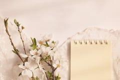 Delikatny czereśniowy bukiet z koronkową pieluchą Fotografia Royalty Free