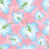 delikatny kwiat bezszwowy Fotografia Royalty Free