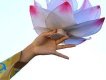 delikatny lotosowy kwiat wspierający rękami tancerz Zdjęcie Royalty Free