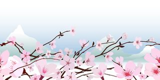 Delikatny różowy wiosny okwitnięcie ilustracja wektor