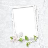 delikatny ramowy biel Zdjęcie Royalty Free