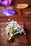 Delikatny Suszy kwiaty Obrazy Royalty Free