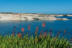 Delimara Coast in the South of Malta Royalty Free Stock Photos