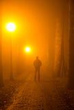 Delinquente nella nebbia Fotografie Stock