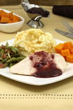 Delisious thanksgiving turkey breast diner Royalty Free Stock Photography