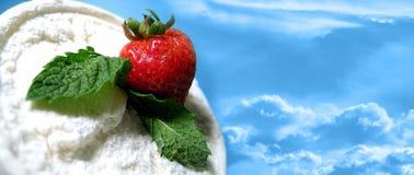 delite草莓 免版税库存照片