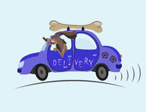 We deliver any goods quickly and in the best possible way. Merry dog on blue cars delivered to customers tasty bone Stock Photography