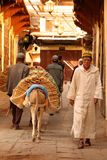 Delivering goods in the medina Royalty Free Stock Image