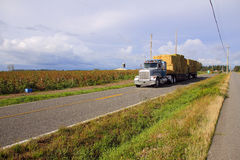 Delivering the Hay. A large truck in central Washington State delivers winter hay bales to a local farm Stock Photo