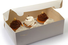 Delivery Box contains six Cupcakes. Six cupcakes are in the delivery box over white background Royalty Free Stock Photography