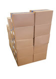 Delivery concept of cardboard box Stock Image