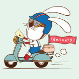 Delivery rabbit Royalty Free Stock Image
