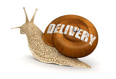 Delivery Snail (clipping path included) Royalty Free Stock Photos