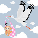 Delivery stork. Baby boy delivery stork background Stock Photography