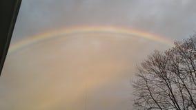Delizia dell'arcobaleno fotografia stock libera da diritti