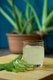 Dell'aloe di Vera del gel uso quasi nella medicina dell'alimento e nell'industria di bellezza Fotografie Stock