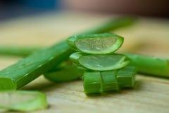 Dell'aloe di Vera del gel uso quasi nella medicina dell'alimento e nell'industria di bellezza Immagine Stock Libera da Diritti