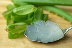 Dell'aloe di Vera del gel uso quasi nella medicina dell'alimento e nell'industria di bellezza S Fotografia Stock Libera da Diritti