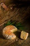Dell'artigianale del formaggio vita ancora Immagini Stock Libere da Diritti