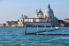della玛丽亚致敬圣诞老人威尼斯 免版税图库摄影