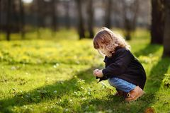 Della bambina ritratto sveglio all'aperto nel giorno soleggiato di primavera fotografia stock