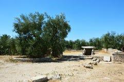 Della Chianca do dólmem na cidade de Bisceglie, Apulia, Itália, imagens de stock