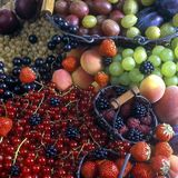 Della frutta vita ancora Immagine Stock Libera da Diritti