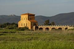 Della Pescaia Grosseto, nat?rliche Reserve Italiens Toskana Maremma Castiglione von Diaccia Botrona, im Hintergrund ?ber dem H?ge lizenzfreies stockbild