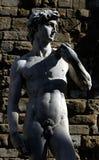 Della Signoria de Florence - de Piazza photos stock