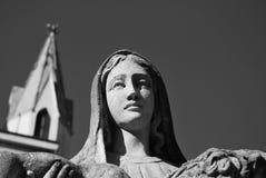 Della Vergine di Volto Immagini Stock Libere da Diritti