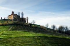 Della Volta di Castello e vigne Barolo, Italia Immagini Stock