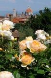 Delle Giardino подняло в Флоренс, Тоскану, Италию Стоковое Фото