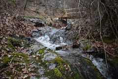 ` delle rocce blu del ` del parco naturale - Bulgaria, Sliven Fotografie Stock Libere da Diritti