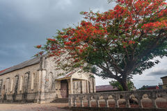 Delonis Regia (Flamboyant). Front of the Catholic Church of Ambilobe, northern Madagascar Royalty Free Stock Photos